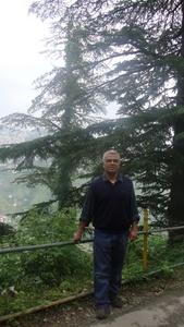 Manish,50-3