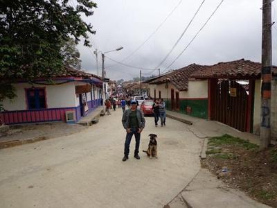 Jose alberto,38-8