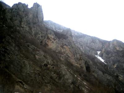 Dalibor,40-50