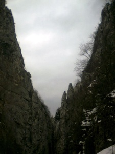 Dalibor,40-55