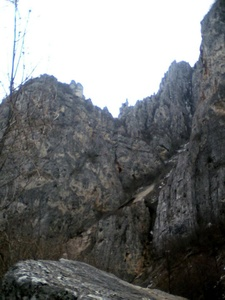Dalibor,40-48