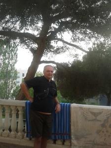 Damiano,55-4