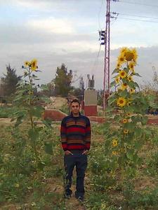 Hossam,31-2