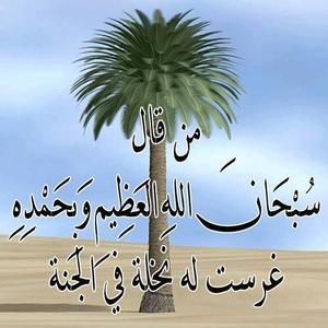 Sadoun,30-8