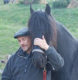 Francesco,51-4