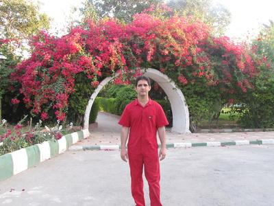 Mehdi,33-2
