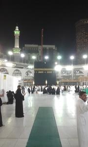 Sayf al-din,47-21