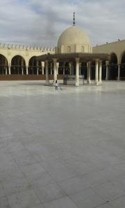 Sayf al-din,47-14
