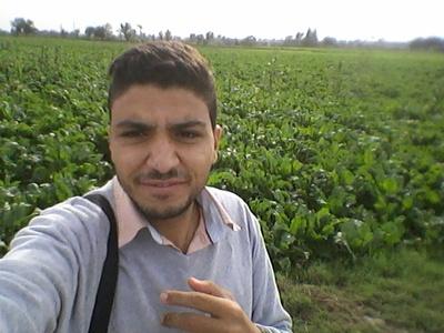 Tamer fahran,30-1