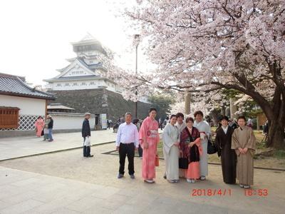 Tsumura,70-9