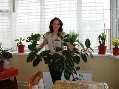 Elena,33-10