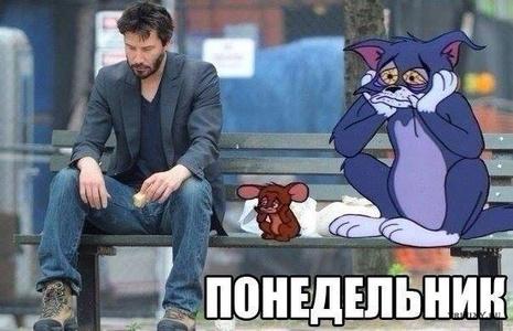 Georgi,50-28
