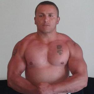 Zoran,35-80