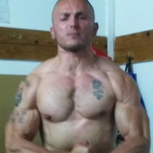 Zoran,35-77
