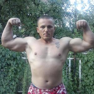 Zoran,35-82